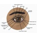 Οφθαλμοπάθειες