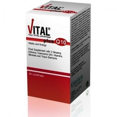 VITAL PLUS Q10 60 LIPID CAPS